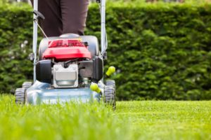 Airdrie Lawn Care