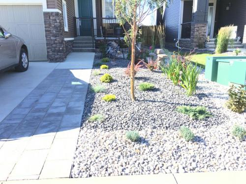 Shoreline Slate Navarro Driveway Extension and low maintenance yard